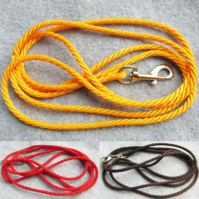 2pcs/lot Cute nylon rope pet dog leash for small dogs and cats diameter 0.5cm