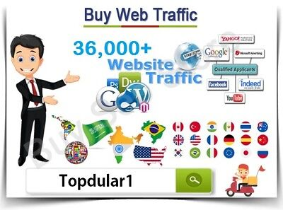 Real Website TRAFFIC for 4 months
