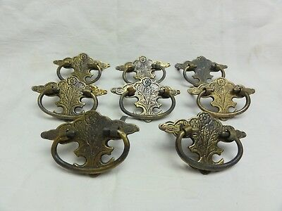 8 x ANTIQUE VINTAGE BRASS CHIPPENDALE BAT WING COLONIAL DRAWER PULL HANDLES