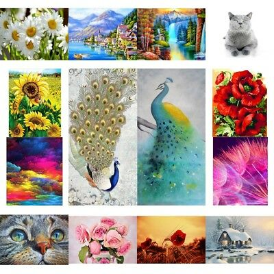 AU Full Drill DIY 5D Diamond Embroidery Painting Art Stitch Craft Kit Home Decor
