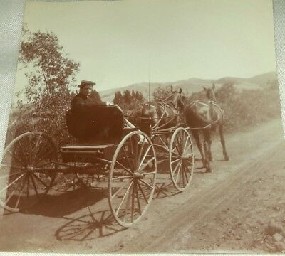 Vintage Old 1890's Photo Handsome Young Man Beau Driving 2 Horse Carriage Buggy