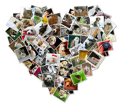 A2 Printed Heart or Number Shaped Collage Of Your Photos Printed on Gloss Paper