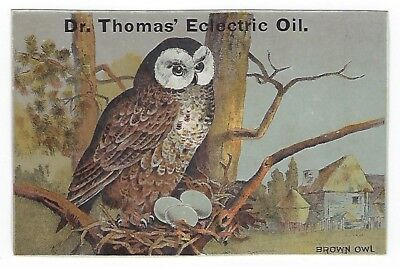 Dr. Thomas Eclectric Oil late 1800's medicine trade card- Brown Owl - Camden, NY