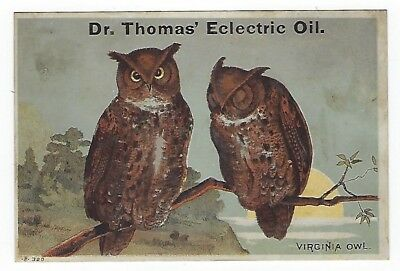Dr. Thomas Eclectric Oil late 1800's medicine trade card- Virginia Owl