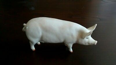 Beswick Pig Champion Wall Queen
