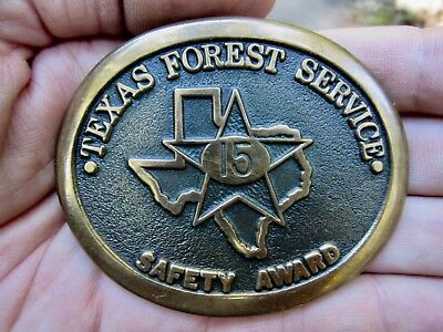 Vtg TEXAS FOREST SERVICE Belt Buckle 1980 TFS A&M Heritage USFS Award RARE VG++