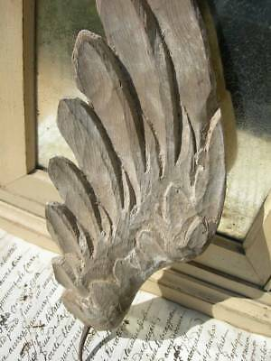 Antique French single 18th Century carved wood angel wing