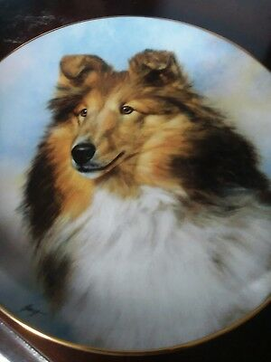 The Danbury Mint Shetland Sheep Dogs LE Plate B35 Perfect Pose New
