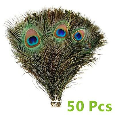 100PCS/Set Real Natural Peacock Tail Eyes Feathers 8-12 Inches /about 23-30cm UK