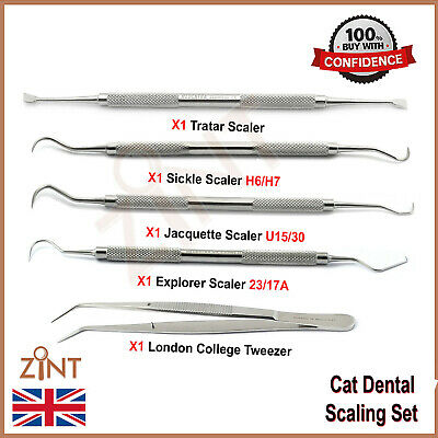 Student Teeth Scaling Kit Dentist Plaque Scrapers Removers Examination Tools New