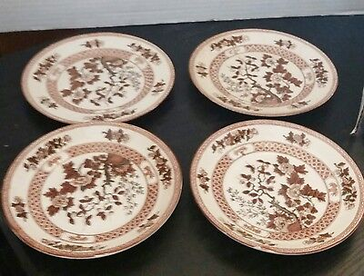 LOT OF 4 Nasco Indian Tree ~ Japan ~ 2 saucers & 2 Bread Plates