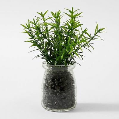 NEW Artificial Rosemary Glass Pot