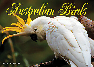 2019 Wall Calendar Australian Birds Calendar by Bartel NEW