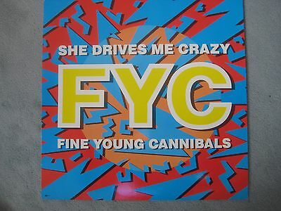 Fine Young Cannibals FYC - She Drives Me Crazy Maxi Single