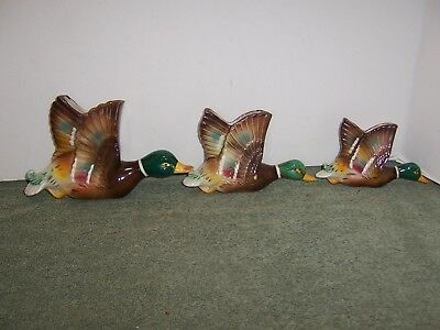 Set of 3 Vintage Ceramic Flying Mallard Duck Wall Pockets Ucagco Japan