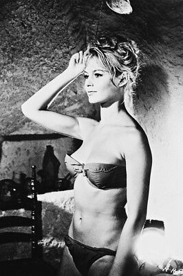 Brigitte Bardot Busty Pose In Open Shirt 24x36 Poster 60x91cm