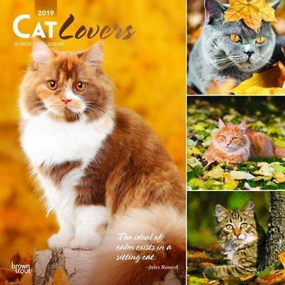 Cat Lovers 2019 16-Month Square Wall Calendar by Browntrout