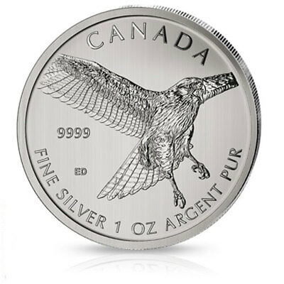 1 oz Silber Red Tailed Hawk 2015 Rotschwanzbussard - Birds of Prey Silber 999,9