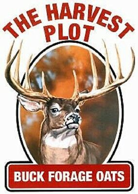 20 Lbs BUCK FORAGE OATS Food Plot Seed Proven Deer Attractant High Protein Food