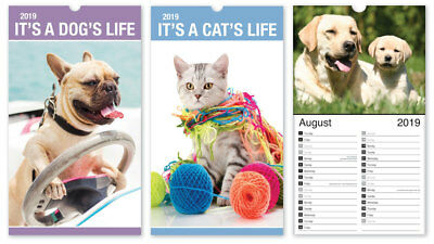 2019 Midi Calendar Wall Hanging Month to View Planner Dogs Cats Flowers Places