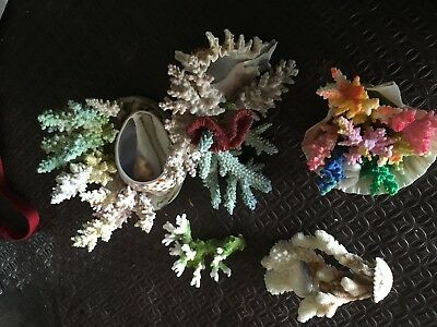 Coral and sea shell ornaments mixture