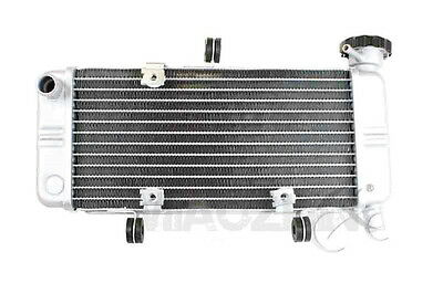 Replacement Radiator Cooler For Honda CBR 250R CBR250R 2011-2013 2012 Motorcycle