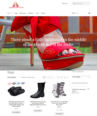 Womans Shoes Drop Shipping Website Business For Sale Unlimited Stock