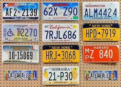 10 MIXED STATE Crafting License Plates TX SD WA MS CA NY MT NY KS NE Lot 139