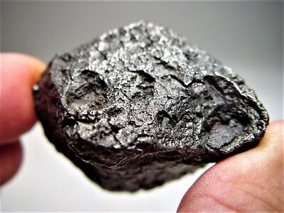 Museum Quality! Lots Of Thumbprints! Best New Campo Del Cielo Meteorite 202 Gms