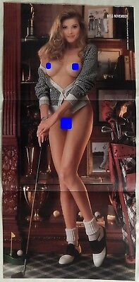 Donna Perry November 1994 Playboy Centerfold Pin Up Poster