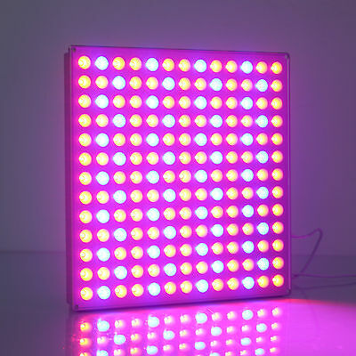 NEW 45w Led Grow Light Panel Red and Blue spectrum Indoor Medical Plant bloom