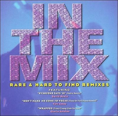 Various Artists : In the Mix: Rare & Hard to Find Remixes CD