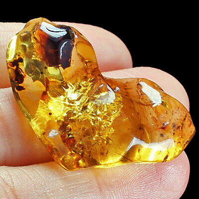 40.04g FLASHING FLOWER Amber Baltic Inclusion Collectible Natural FYc694