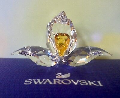 Swarovski AFRICAN ORCHID SCS Membership gift 2018