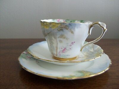 Paragon Tea Cup and Saucer Trio By Appointment WOODLAND BLUEBELL