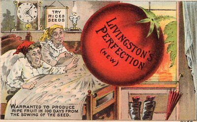 1800's Victorian - Rice's Seeds - Livingston Perfection - Trade Card