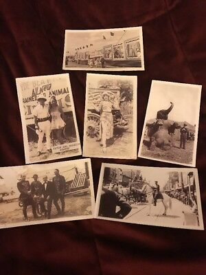 Vintage Circus Photos- Lot Of 18 Clyde Beatty Cole Bros, Ringling Bros, Etc