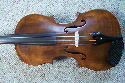 Beautiful Nicolaus Amatus Full Size Violin Estate