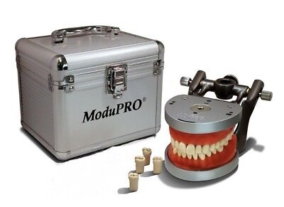 Acadental Typodont- ModuPRO One -Model MP R320