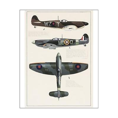 "10""x8"" (25x20cm) Print Supermarine Spitfire and Hawker Tempest ae..."