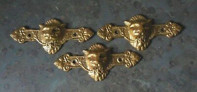(3) FANCY Antique Victorian Style LION Face HEAD Brass Drawer Pulls