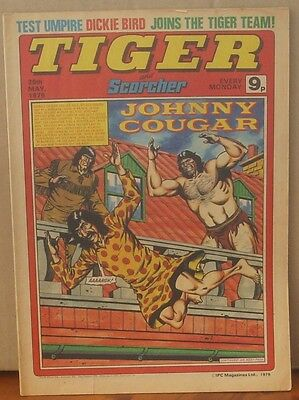 TIGER and SCORCHER 26th May 1979 Johnny Cougar Hotshot Hamish Billy's Boots