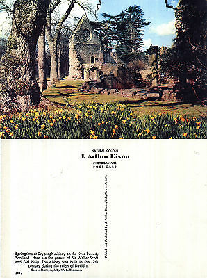 1980's DRYBURGH ABBEY BERWICKSHIRE SCOTLAND UNUSED COLOUR POSTCARD