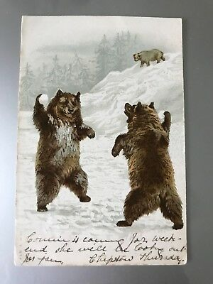 Teddy Bear Postcard Two Bears Throwing Snowballs Postally Used