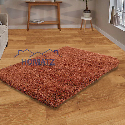 Terracotta Small Large Size Thick Plain Soft Shaggy Living Room Rug Bedroom Rugs