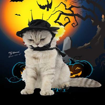 Pet Cat Halloween Party Costume Puppy Cat Kitten Cosplay Cloak Outfit with Hat