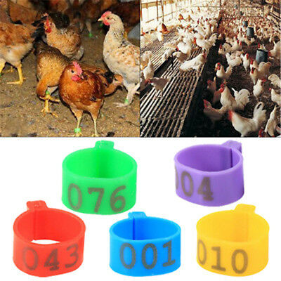100X 16mm Clip On Leg Band Rings for Chickens Ducks Hens Poultry Large Fowl HGUK
