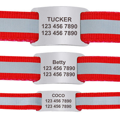 Stainless Steel Slide-On Pet ID Tags for Dogs Personalized Free Engraving