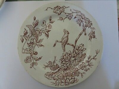 RARE Antique Davenport Nile Pattern Set of 6 Plates White/Brown With Bird
