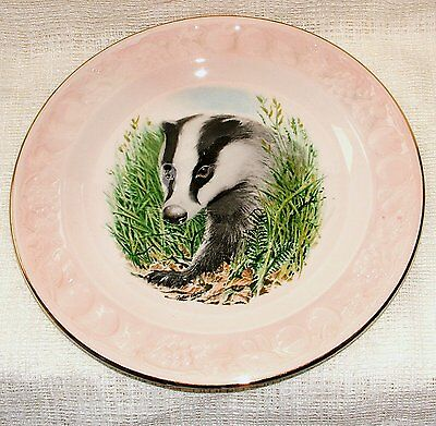 PALISSY Royal Worcester Embossed DECORATIVE PLATE - BADGER